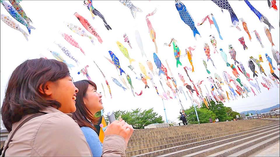 色彩鮮豔的1000隻鯉魚旗,在大阪高槻市空中優雅舞動